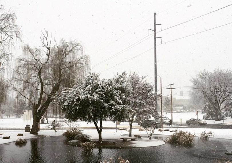 snow-las-cruces3