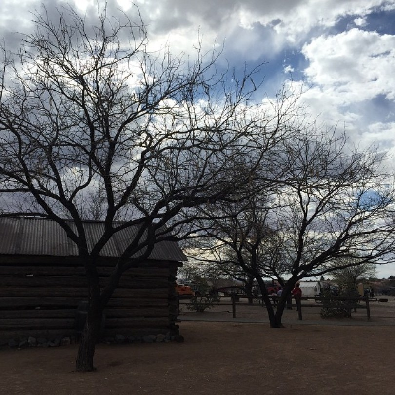 New Mexico Farm and Ranch Heritage Museum 17