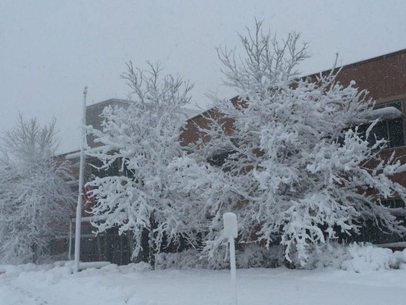 fort collins colorado winter photos
