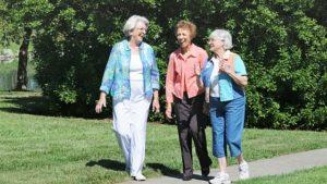 Senior brain health program