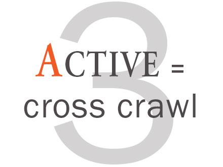 3. Active - cross crawl