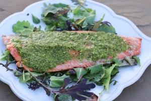 Wild-salmon-cilantro-chutney|brainworkskitchen.com