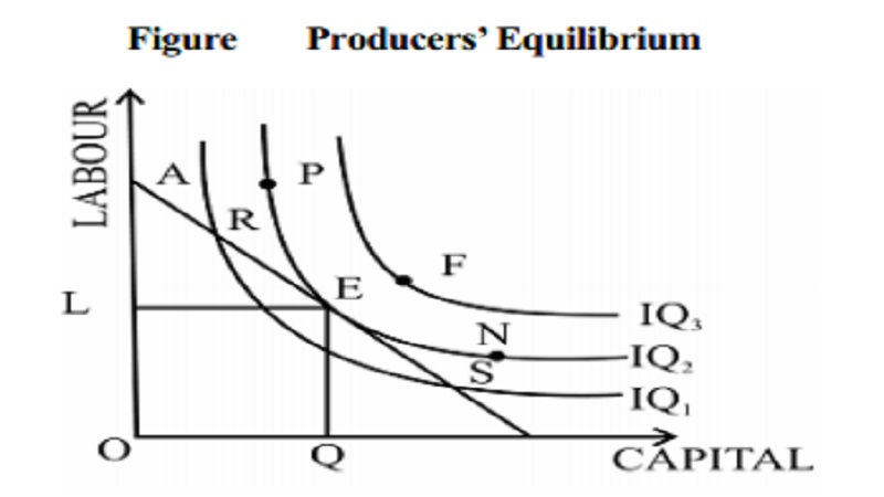 Producer's Equilibrium and The Cobb Douglas Production