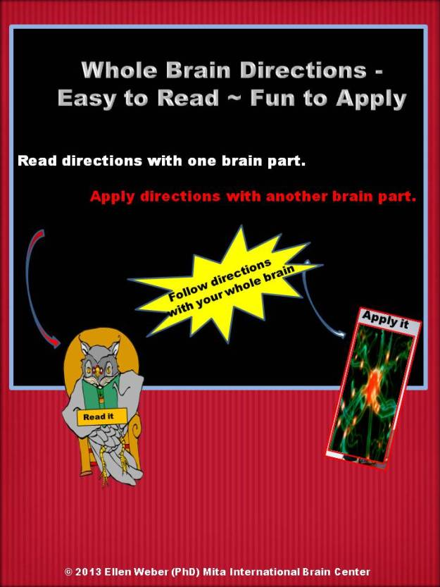 89. Whole Brain Guide to Reading Directions Blog JPEG