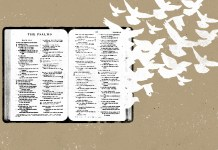 12 Bible Verses To Read This Sunday