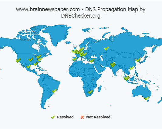 How To Check DNS Propagation For Blogs, Websites