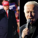 Joe Biden Leads Donald Trump In Electoral Votes With 238 Vs 213