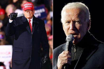 Joe Biden Leads Donald Trump In Electoral Votes With 238 Vs 213