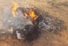 Mob Kills 6 Bandits In Kaduna State