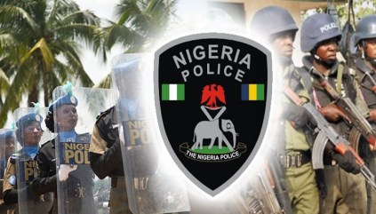 Benue State Police Arrest 83 Suspected Cultists
