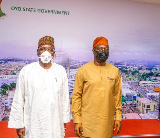 Ranching Is A Private Business, Oyo Won't Provide Land For Ranching - Gov Makinde