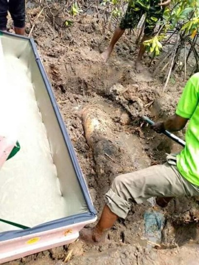 Decomposing Body Of Kidnapped Rivers Community Chairman, Prince Deekia Found Buried In Shallow Grave