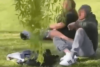 Watch Shocking Video As Couple Is Filmed Having S----e----x In Park In Front Of Kids