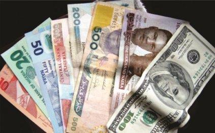 Naira Crashes To N493 Per Dollar At Parallel Market