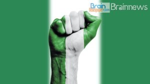 Nigerian flag color