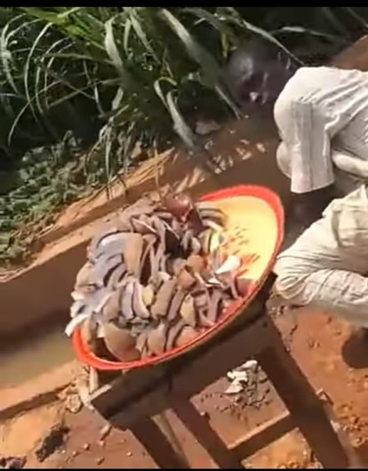 See Photo, Video As Coconut Seller Is Caught Using Water In Gutter To Wash His Coconut