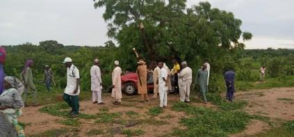 5 Dies As Car Rams Into Tree In Adamawa