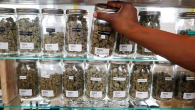 5 New Careers Created By Marijuana Legalization In Canada