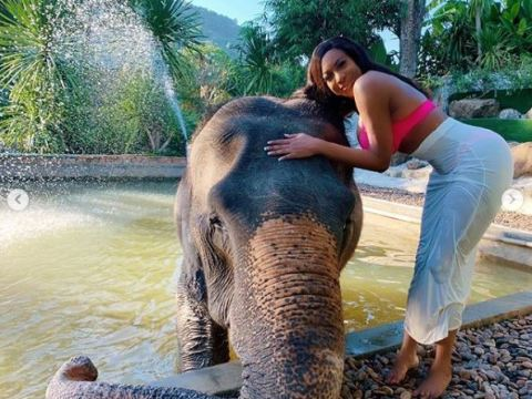 Seductive Outfit Of Chika Ike As She Pose With Elephant