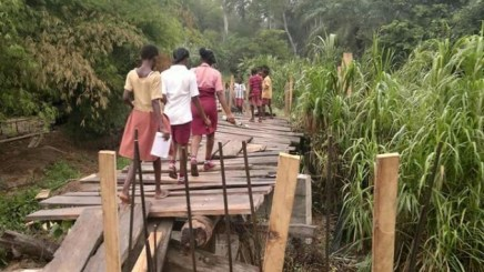 Cross River - 3 School Girls Found Dead With Private Parts Removed