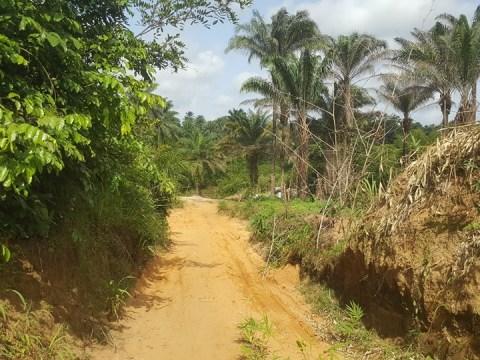 Bridge That Swallows Pregnant Women, School Children In Akwa Ibom