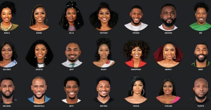 Full Profile Of The 2019 BBNaija Housemates