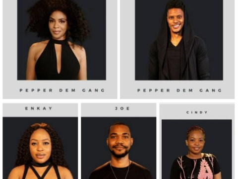 Meet The 5 Newest Housemates In #BBNaija House