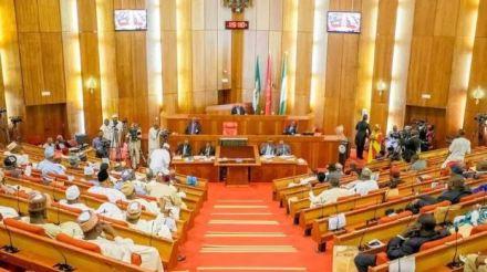 Senate Confirms NDDC Board Nominees