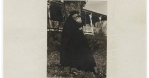 My Faraway One: The Passionate Love Letters of Georgia O'Keeffe and Alfred Stieglitz