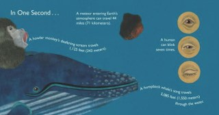 An Illustrated Visualization of What Happens on Earth in a Single Second