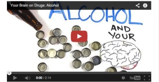 The Science of Your Brain on Alcohol, Animated