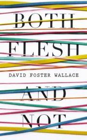 The Nature of the Fun: David Foster Wallace on Why Writers Write ...