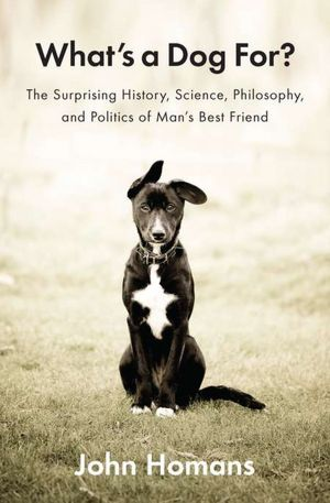 What's a Dog For: A Meditation on Love, Loss, and the Art of