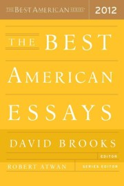 what makes a great essay brain pickings ah the timeless power and joy of a great essay joan didion on self respect david foster wallace on the nature of fun susan sontag on courage and