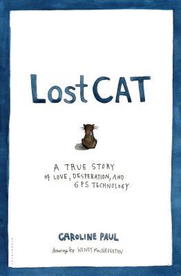 lostcat.jpg?w=680