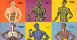 "French Polymath  Paul Valéry on ""The Three-Body Problem"""