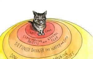 Lost Cat: An Illustrated Meditation on Love, Loss, and What It Means To Be Human
