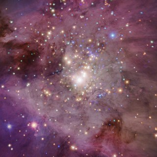 We Are a Cosmic Accident: Alan Lightman on Dark Energy, the Multiverse, and Why We Exist