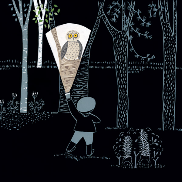Flashlight: A Whimsical Wordless Story about Curiosity and Wonder ...
