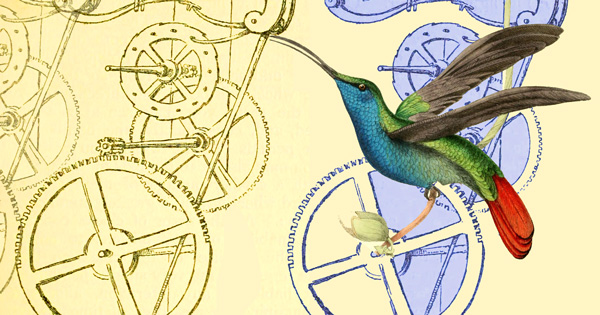 The Hummingbird Effect: How Galileo Invented Timekeeping and
