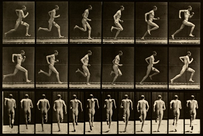 Eadweard Muybridge: Animal Locomotion, Plate 62