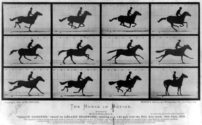 Horse in Motion: One of Muybridge's motion studies commissioned by Stanford