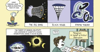 Einstein's Brilliant and Unusual Life, in a Graphic Novel