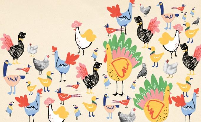 thekingofthebirds8