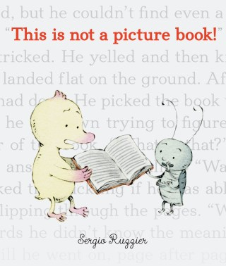 This Is Not a Picture Book: An Irreverent Illustrated Ode to Why We Read