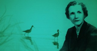 Rachel Carson on Science and Our Spiritual Bond with Nature