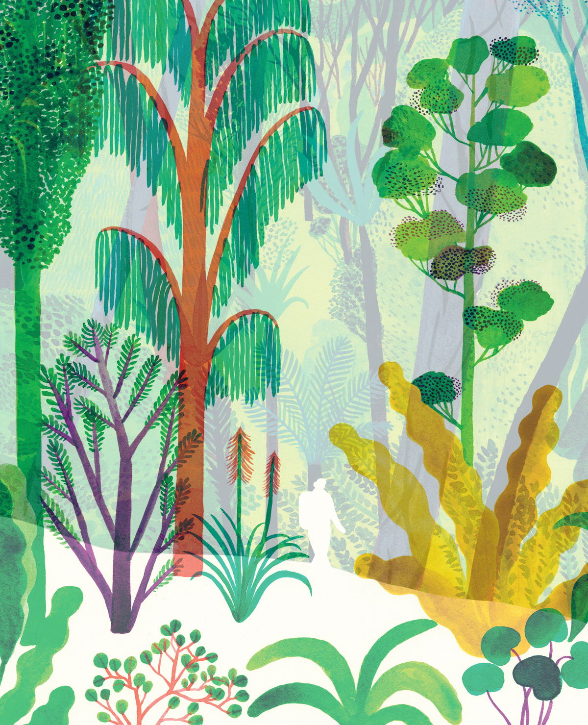 A Stunning Illustrated Celebration of the Wilderness and the Human Role in Nature Not as Conqueror but as Humble Witness