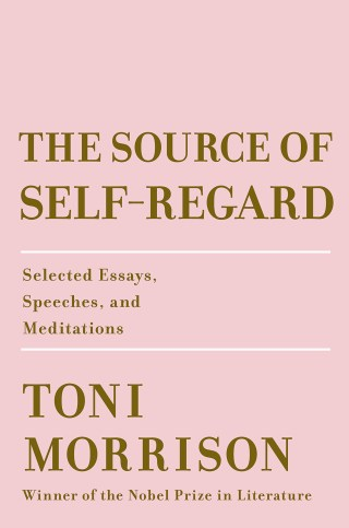 The Source of Self-Regard: Toni Morrison on Wisdom in the Age of Information