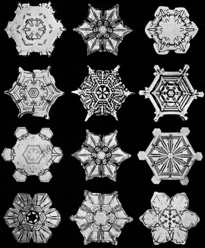 wilsonbentley_snowflakes14.jpg?resize=680%2C824