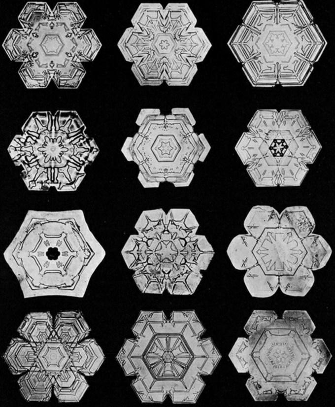 wilsonbentley_snowflakes6.jpg?resize=680%2C826